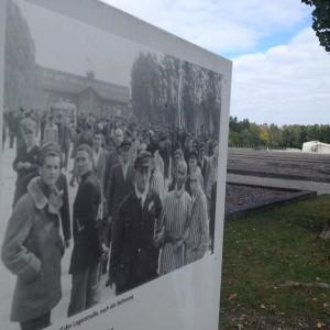 Dachau (2)