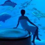 banheiro Atlantis The Palm Dubai