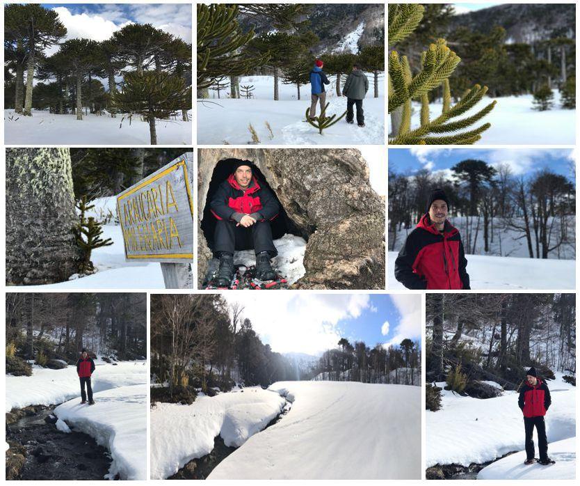 passeios-com-raquete-de-neve