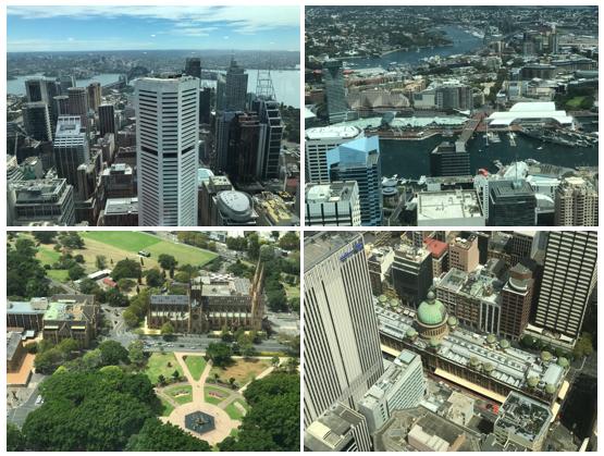 sydney-tower-eye-vista