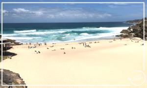 praias-em-sydney