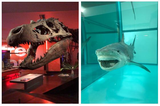 museu-em-newcastle