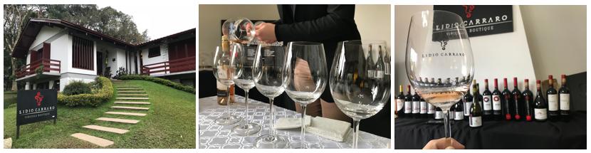 vinicola-lidio-carraro-bento-goncalves