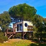 Casa na Árvore em São Bartolomeu da Serra