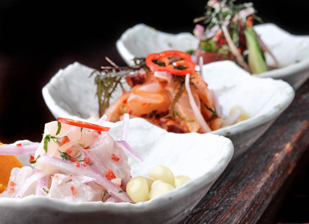 pratos-tipicos-do-peru-ceviche